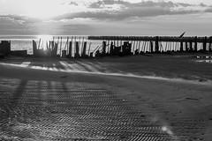 Пейзаж, закат, пляж, песок, волнорез, побережье Белого моря, остров Ягры, архангельская область, город Северодвинск (Nanaccept) Tags: белое море пляж песок волнорез побережье фото блики закат север nanaccept cmm