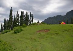 Jarogo Banda, Swat