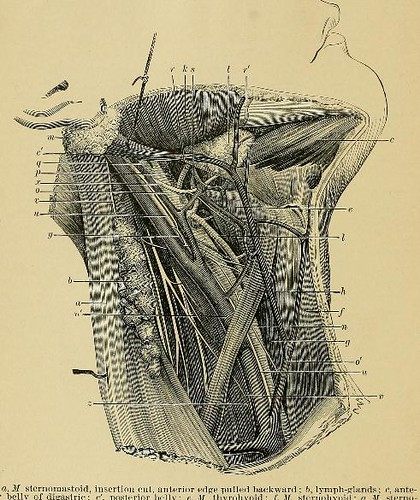 This image is taken from Page 78 of A system of practical surgery, v.2