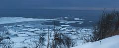 Панорама, ледоход возле берега Белого моря, Ненокса (Nanaccept) Tags: панорама ледоход берега белого моря ненокса льдины зима березы море белое фотография голубое небо переход перелив градиент