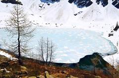 Lago Mognola , 2005 m (dino_x) Tags: panorama landscape mountains alpi alps switzerland lago lake water acqua montagna allaperto nature riflessi reflections paesaggio roccia neve ghiaccio