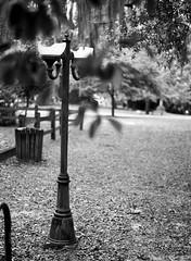 Broken Lamp (PositiveAboutNegatives) Tags: leica slr leicaflexsl 50mm 50mmsummicron leicar film analog foma fomapan fomapan100 rodinal coolscan vuescan lamp lightpost
