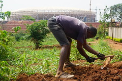 GREENER CITIES IN AFRICA (bernawy hugues kossi huo) Tags: olembé stadium can cameroun cameroon african city yaoundé green vegetable hunger rural nutrition citizen security transport pollution horticulture employment