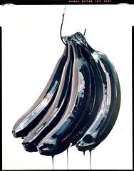 bananadrama (steve-jack) Tags: sinar p kodak aero ektar 178mm 100 film 4x5 large format tetenal c41 kit epson v500
