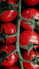 Tomater.. phoneshot (Tonny Christensen) Tags: mittwochsmakro