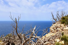 Cap de Formentor (ISO 69) Tags: mallorca majorca spain espana españa spanien malle nature natur kap wild baleares balearen pollença capdeformentor formentor cap photography fotografie reise travel