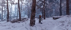 """""""Wild Lands"""" (Floppy_Ragdoll) Tags: horizon zero dawn the frozen wilds ps4 pro gaming playstation photo mode photography virtual snow forest robots sifi si fi"""