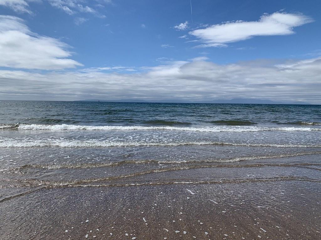 Sea Barassie