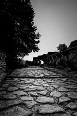 Palatine Hill, Rome, Italy (pas le matin) Tags: rome roma italy italia italie travel voyage world europe europa path chemin stone pierre ciel sky palatinehill palatino palatine palatin montepalatino montpalatin canon 5d 5dmkiii canon5dmkiii canoneos5dmkiii eos5dmkiii