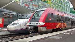 190524 1908 (chausson bs) Tags: renfe sncf ave ter perpignan trenes trens cheminsdefer railways 2019