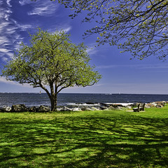 Great Island Common (Chad Straw Images) Tags: newengland nikon nikond610 newhampshire greatislandcommon newcastlenewhampshire blue clouds sky outdoors green nature ocean water tree scenic scenery statepark travel chadstrawimages travelphotography unitedstates landscape landscapes landscapephotography naturephotography