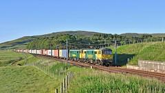 Freightliner Intermodal_86637+86639_4L81_Wandel, Scotland_270619_01 (DS 90008) Tags: railway railtransport 4l81 class86s cans 86637 86639 freightloco electrictraction containers wandel train freightliner container scotland wcml westcoastmainline coatbridge londongateway logistics