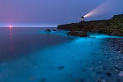 'Blue in the Bay' - Anglesey (Kristofer Williams) Tags: bioluminescence bioluminescent plankton algae water sea waves lighthouse rocks beach coast seascape landscape night nightscape anglesey penmon wales penmonpoint
