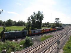 6Z56 **MEGA CONVOY** - 56103 + 56091 + 33035 + 20314 + 20311 + 20132 + 20096 (Trainsurfers) Tags: loco locomotive locomotives heritage traction 6z56 barrowhill castleton hopwood dcr hnrail 56103 56091 33035 20314 20311 20096 20132 convoy elr ashtonmoss train trainspotting trainspotter trainspotters trains diesels diesel diesellocos 03072019 sun sunny sunshine july summer class20 class56 class33 iangoddard britishrail br livery trees grass track rails ground cricket sport junction signal