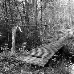 Sweden19-039 (salparadise666) Tags: rolleiflex sl66 planar 80mm fomapan 100 caffenol cl nils volkmer analogue film medium format camera slr 6x6 square landscape rural sweden blekinge län