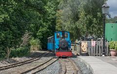 Heatherslaw Light Railway (Dibbly Dobbler) Tags: heatherslaw light railway sonyrx10iii