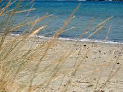 """The beach is not always a place sometimes it's a feeling..."" (fl_mala) Tags: parosisland cyclades paros greece ilovegreece sea beach sand island lifeisbetterontheisland"