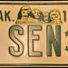 * South Dakota U.S. Senate
