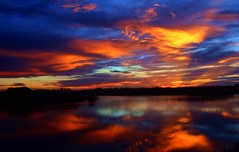 Firelight Delight (PelicanPete) Tags: sunset firelight floridaeverglades palmbeachcounty unitedstates usa nature beauty natural loxahatchee national wildlife refuge firelightdelight quartasunset490