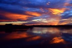 Glow Spots (PelicanPete) Tags: sunset firelight floridaeverglades palmbeachcounty unitedstates usa nature beauty natural loxahatchee national wildlife refuge glowspots 62919