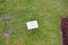 _MG_5999.jpg (Vagari) Tags: russboroughhouse russborough anniversary ireland cowicklow