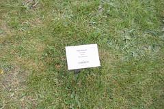 _MG_6003.jpg (Vagari) Tags: russboroughhouse russborough anniversary ireland cowicklow