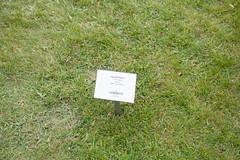 _MG_6011.jpg (Vagari) Tags: russboroughhouse russborough anniversary ireland cowicklow