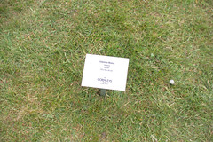 _MG_6014.jpg (Vagari) Tags: russboroughhouse russborough anniversary ireland cowicklow