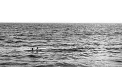 Out at Sea (cmctaggs) Tags: california beach skater los angeles san francisco skyline bay bridge christopher mctaggart christophermctaggart cmctaggs