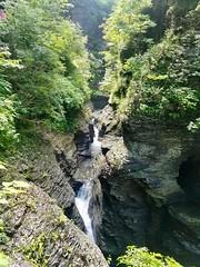 Watkins Glen State Park (howderfamily.com) Tags: newyork schuyler watkinsglen waterfall