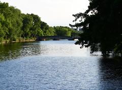 Bridge Over Untroubled Water (jeffyphotos) Tags: guelphontario speedriver water trees stonebridge
