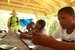 Boys village learn a new card game