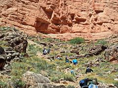 Hiking to the Nankoweap Granaries - Grand Canyon (Al_HikesAZ) Tags: alhikesaz az arizona grandcanyon grand canyon rafting coloradoriver colorado river raft arizonaraftingadventures azra nankoweap hike vista explore