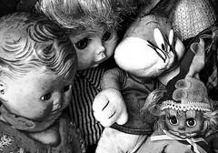 Strange gathering (Leaning Ladder) Tags: lecce italy italia puglia apulia blackandwhite bw faces dolls canon 7dmkii leaningladder