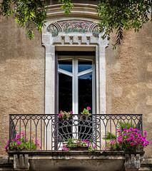 The streets of Lecce (Leaning Ladder) Tags: lecce italy italia puglia apulia windows flowers balcony canon 7dmkii leaningladder