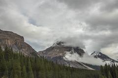 Kicking Horse Pass (www78) Tags: alberta banff canada icefieldsparkway nationalpark national park kicking horse pass