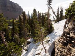Difficulty (Stephen Gravrock) Tags: hiking mtoberlin glaciernationalpark landscape spring2019montanatrip 12mmf2 montana