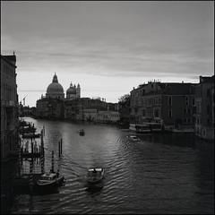 Venice (Koprek) Tags: rolleiflex28f film analog 120 6x6 ilfordhp5 venice italy may 2019 koprek