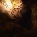 Original Ladder - Carlsbad Caverns National Park