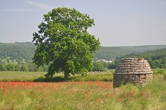 Stone Monument, Peak District National Park, Derbyshire, England. (westport 1946) Tags: england unitedkingdom derbyshire nationalpark baslow chatsworthhouse peakdistrict bluesky sky horizon forest woods trees tree stonemonumont poppy poppies wildflowers flowers grasslands grass grassland fields field farmland farm farmanimals cows cattle countryhouse landscape rural outdoor countryside tranquility serenity peaceful idyllic serene tranquil