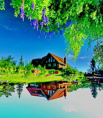 Water Art: A different perspective of Bluebird Estates (peggyhr) Tags: peggyhr lupine lake loghouse trees boats lawn flowers sky water reflections blue green brown yellow red white flipped dsc03537abc bluebirdestates alberta canada carolinasfarmfriends