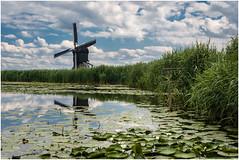 Kinderdijk in summer (Rob Schop) Tags: handheld kinderdijk clouds summer green reflection windmill foreground pola kitlens sonya6000 adayout zuidholland unesco alblasserdam dutch dutchlandscape
