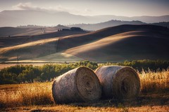 Erntezeit (Petra Runge) Tags: tuscany valdorcia italy field culturallandscape landscape summer landschaft landwirtschaft ernte strohballen sommer italien toskana feld