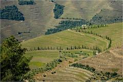 _tuscanylike (l--o-o--kin thru) Tags: portugal ubenkede landscape