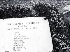 Roma cimitero acattolico tomba G. Corso