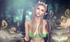ᴵⁿᵗᵒ ᵗʰᵉ ʷⁱˡᵈ... (scarlettrose.karsin) Tags: secondlife sl maitreya genusproject jian wolf nature avatar moonelixir elf swallow