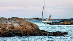 Heading for harbour (tonyguest) Tags: sea seascape eneskär sailboat yacht rocks water sailing sweden tonyguest karlshamn blekinge