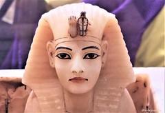 Alabaster lid bearing the image of the king (Merja Attia) Tags: alabasterlids gildedwood shrine alabaster containerforcanopicvases tutankhamon treasureroom kv62 frieze uraeusserpent sundisk fourgoddesses isis nephthys neith selket ancientart ancientegypt egyptianmuseum cairo egypt