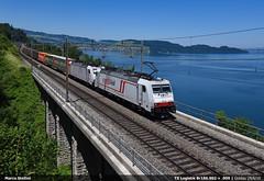 Cargo Bellavista... (Marco Stellini) Tags: tx logistik txl mercitalia rail zuhgersee schweitz traxx bombardier e186 br186