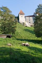 _DSC7066 (Ghostwriter D.) Tags: burghausen bavaria germany nikond600 castle